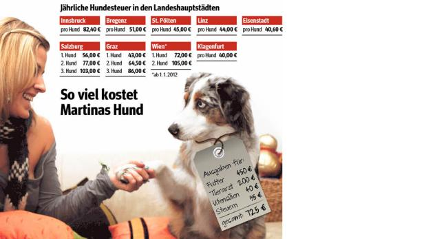 Die Österreicher lieben ihre Hunde – und geben pro Jahr 850 Millionen Euro für sie aus.