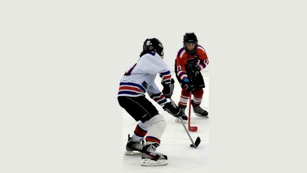 Action: Vor allem der Zusammenhalt der Spieler und die rasante Geschwindigkeit auf dem Spielfeld zählen beim Eishockey.