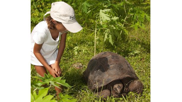 Riesenschildkröten und seltene Vogelarten fühlen sich wohl in der bezaubernden Natur der Miniatur-Insel.