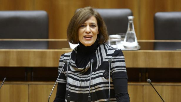 Abgeordnete zum Nationalrat: Mag.a. Karin Hackl.