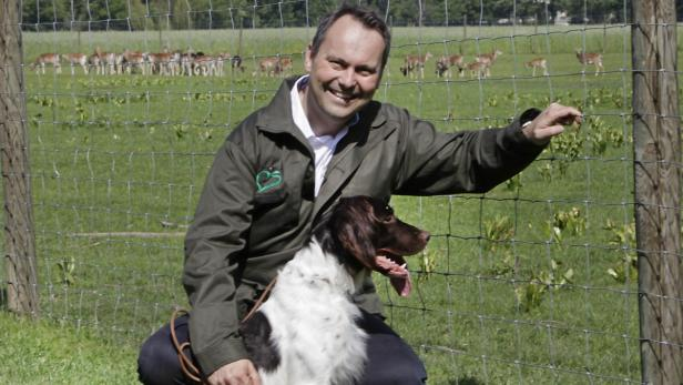 : Jagdhunde, die Forstdirektor Januskovecz aufs Wort folgen