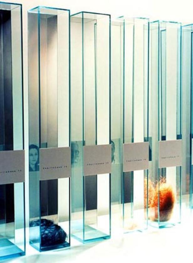 Installation mit Haaren: ein Vorgänger-Projekt von Karin Hannak