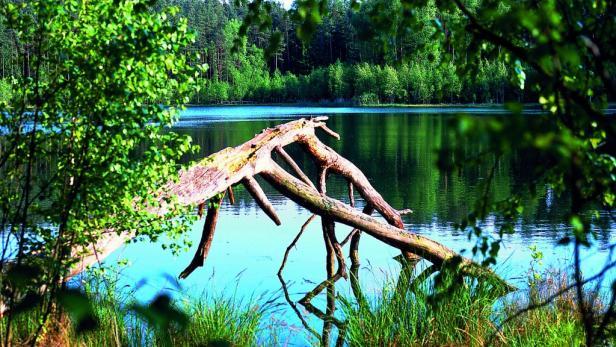 ... Entspannen in der urigen Seenlandschaft der Masuren – auch das macht Polens Tourismus-Szene aus.