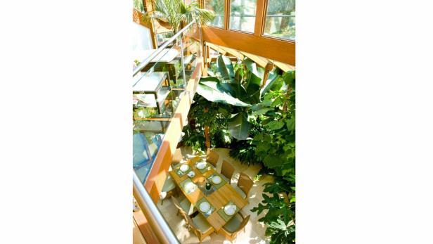 Große Pflanzen sind im Wintergarten die beste Beschattung und der schönste Sichtschutz.