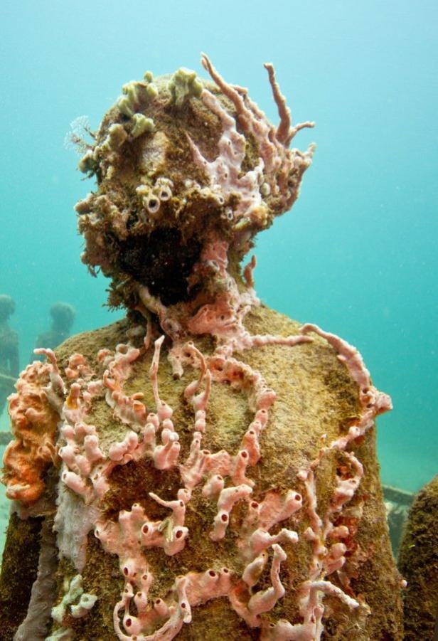 Karibik, schnorcheln, Skulptur und Korallen im Unt…