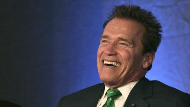 REUTERSThe former Governor of California, Arnold Schwarzenegger smiles during the 12th Delhi Sustainable Development Summit 2011 organised by The Energy and Resources Institute (TERI) in New Delhi February 2, 2012. REUTERS/Parivartan Sharma (INDIA - Tags: