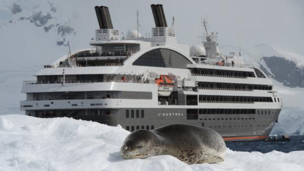 Die L'Austral, Luxusschiff inmitten der antarktischen Wildnis