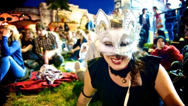 3. CAT VIDEO FESTIVAL VIENNA am Samstag im Arena S