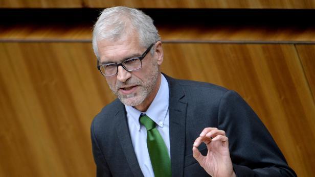 Harald Walser von den Grünen