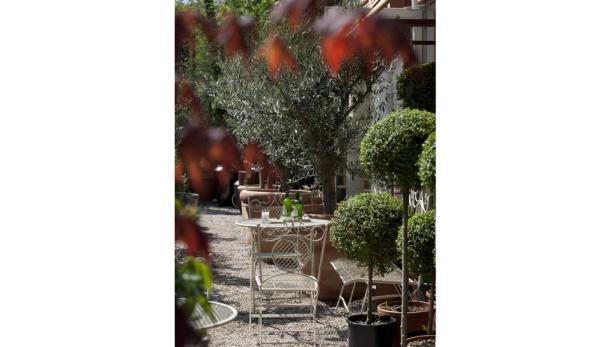 Der pflegeleichte Buchsbaum bleibt für alle Pflanzenfreunde ein Dauerbrenner – hier ziert er den Platz vor der Gärtnerei.