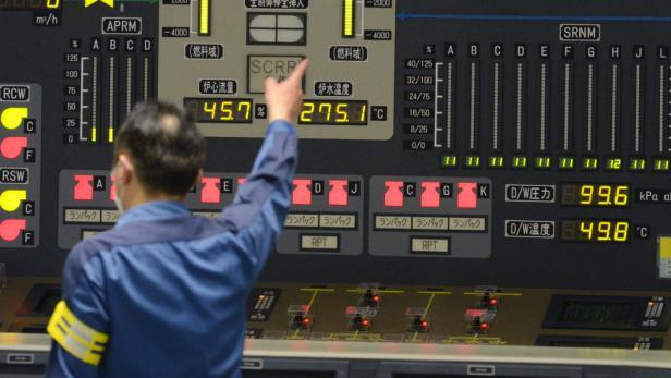 Der vorletzte Atommeiler in Japan wurde jetzt vom Netz genommen
