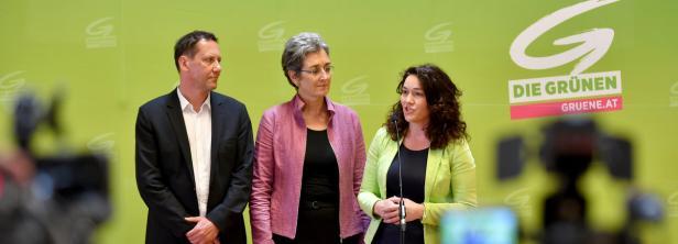 Bundesgeschäftsführer Luschnik mit Lunacek und Felipe