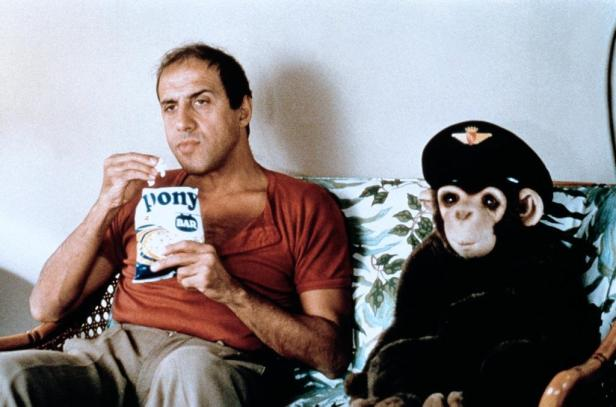Celentano in Gib dem Affen Zucker
