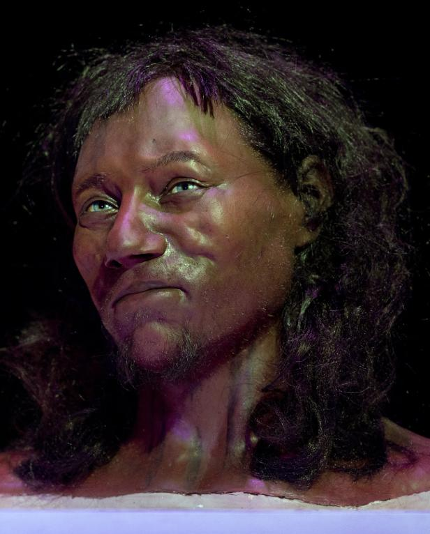 A full face reconstruction model made from the sku…