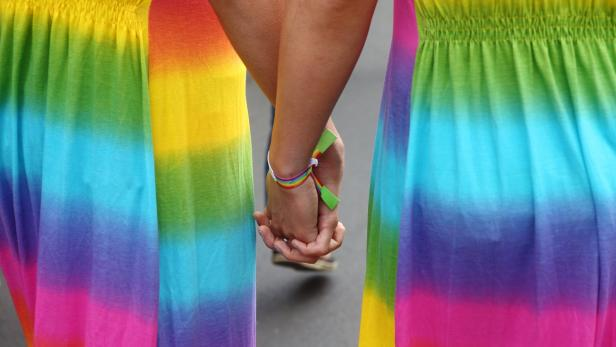 Activists hold hands during the Regenbogenparade g