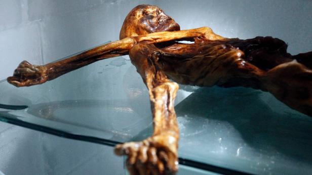 Ötzi hat mehr als 60 Tattoos