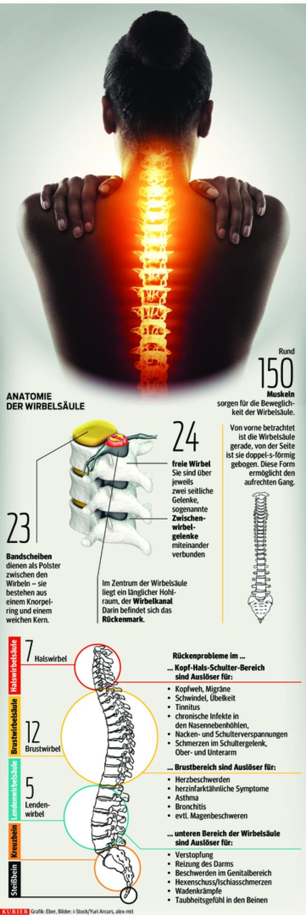 Problemfall Wirbelsäule: 20 Experten-Tipps für Rückenschmerzen ...