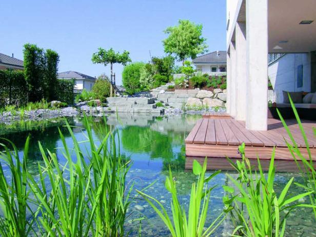Messen des Chlorwertes, Absaugen von Blättern und Insekten: Ein Swimmingpool bedarf regelmäßiger Reinigung.