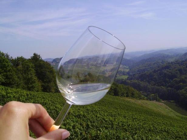 Die Südsteiermark kann mit erlesenen Weinen und einzigartiger Landschaft aufwarten.