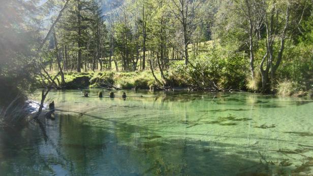 Auch einen Ausflug wert: Das Innergschlöß in Osttirol. Im Hintergrund der Großvenediger.