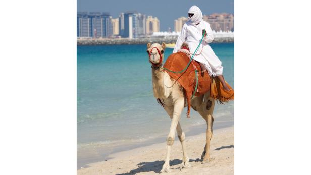 Traumlage auf der Palm Jumeirah und 450 Meter Privatstrand