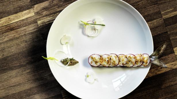 Gerade die Gourmet-Trophy gewonnen, nebst Hauben und Michelin-Sternen in den letzten Jahren. Konstantin Filippou kochte das Novelli an die Wiener Spitze.