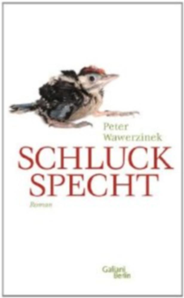 Peter Wawerzinek: 'Schluckspecht'.Galiani. 464 Seiten. 20,60 Euro.