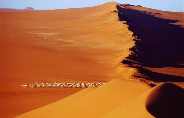 MALI, 2001; Taoudenni:  caravane de sel a la sorti…