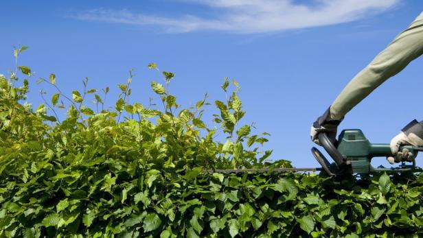 Rechte Und Pflichten Von Gartenbesitzern