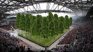 Kunstprojekt Stadionwald Die Ersten Baume Kommen In Die