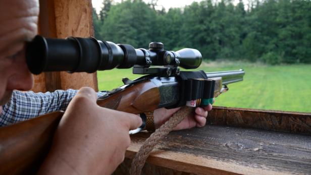 Jagd nachtsichtgeräte günstig kaufen ebay
