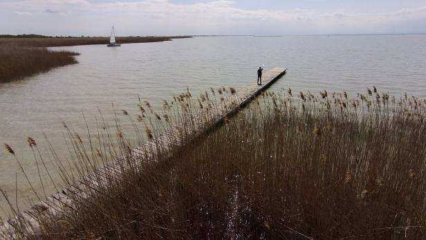 Bekanntschaft Single Begegnung Purbach Am Neusiedler See