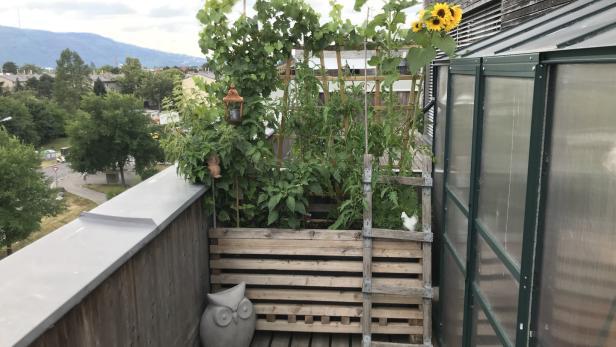 Axels Terrasseneintopf Natur In Der Kiste Kurier At