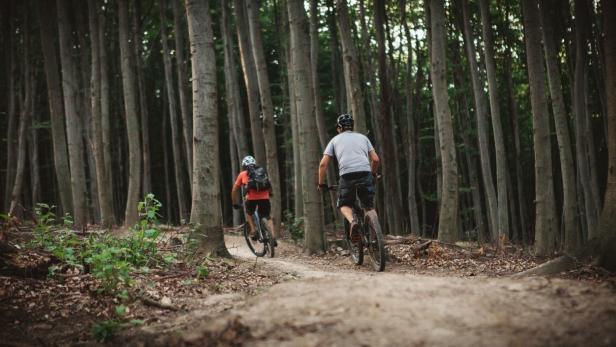 Bekanntschaften in Sulz im Wienerwald - Quoka