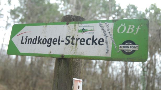 Single heute in wienerwald - Sex sucht in Gerlingen