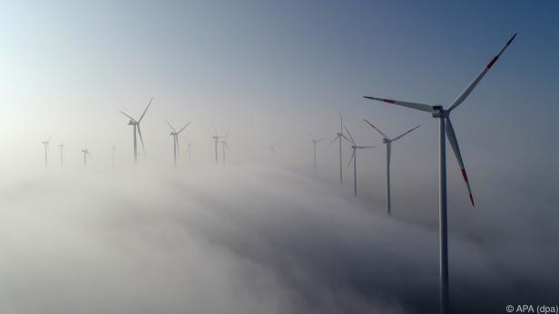 Insgesamt wurden 56 Mrd. kWh Ökostrom erzeugt und ins Netz eingespeist