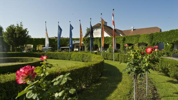 Seitensprung in Burgenland | sterreich | recognition-software.com