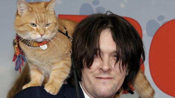 Germany premiere of 'A Street Cat Named Bob'