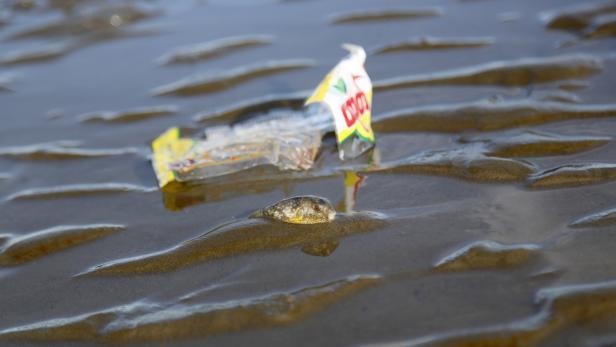International Coastal Cleanup Day in Myanmar