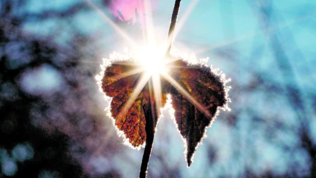Sonnenschein und Frost