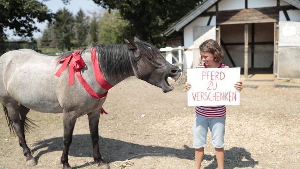 """Pferd und Bub mit Plakat auf dem steht: """"Pferd zu verschenken"""""""