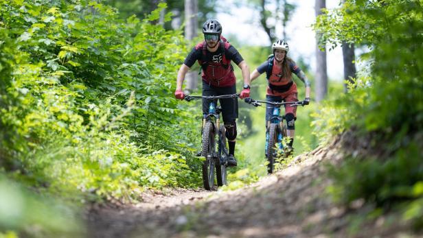 Wienerwald Trails