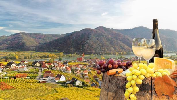 Bottle of white wine with glasses against Weissenkirchen village with autumn vineyards in Wachau valley, Austria