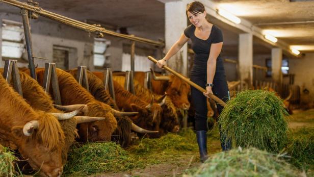 Freiwillig am Bauernhof: Zeit schenken und Neues erfahren