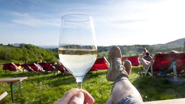 Relax in Vineyard