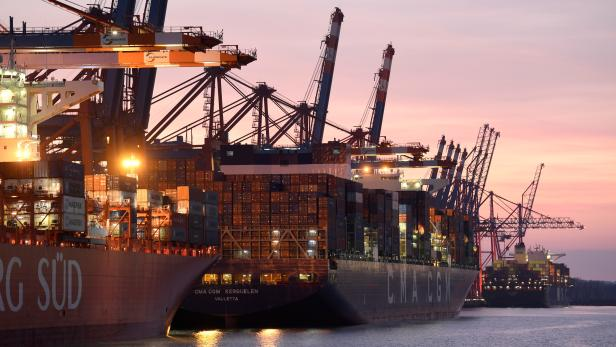 FILE PHOTO: Container ships are loaded at a container terminal in the harbor amid the outbreak of coronavirus disease (COVID-19) in Hamburg