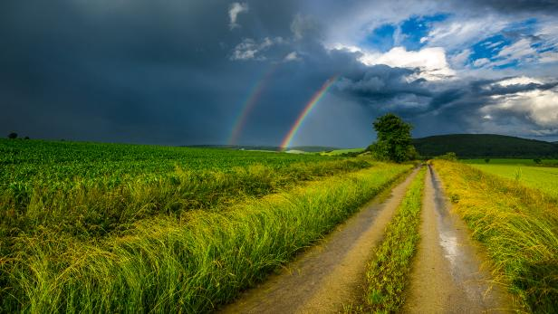 The road to the rainbow