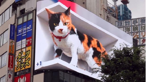 Die riesige 3D-Katze aus Tokio
