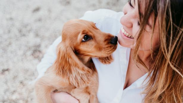 young woman and her cute puppy of cocker spaniel outdoors in a park