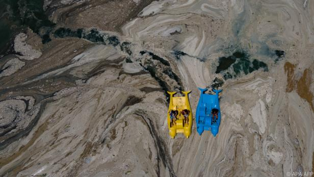 Meeresschleim erstickt das Marmarameer